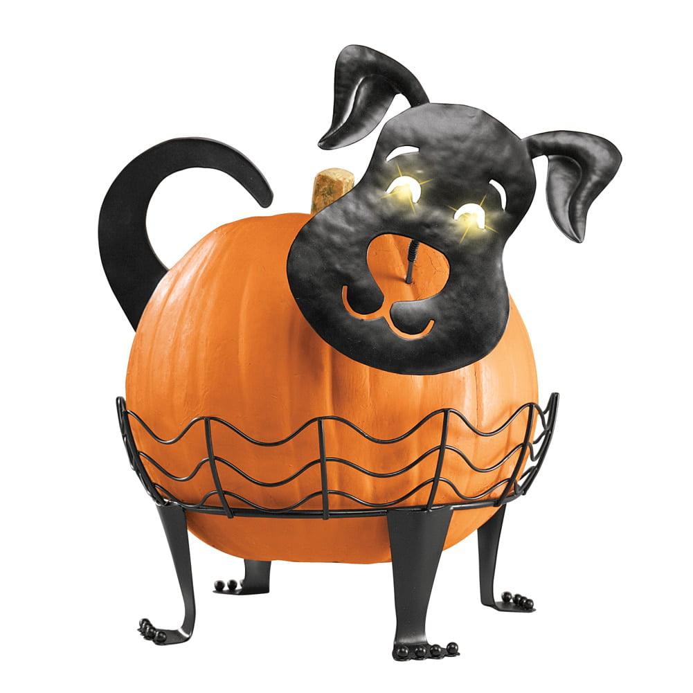 Decorative Dog Pumpkin Holder With Light-up Eyes, Black