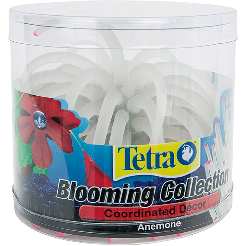 Tetra Blooming Collection, Anemone