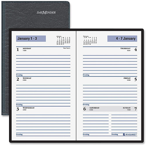 At-A-Glance Ruled Weekly Appointment Planner