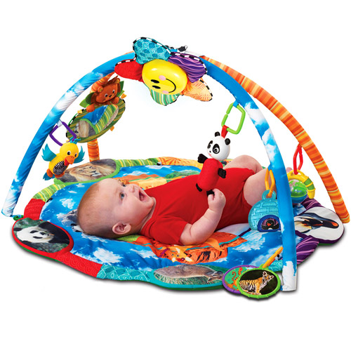 Baby Einstein Discover The World Playgym