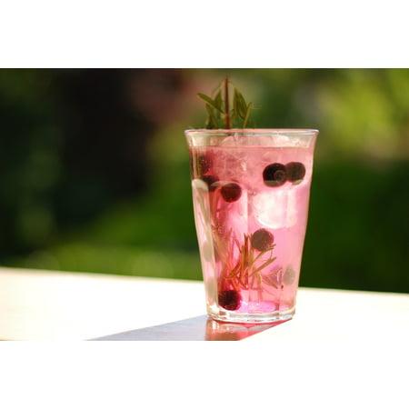 Laminated Poster Drink Beverage Refreshing Summer Poster Print 24 X 36