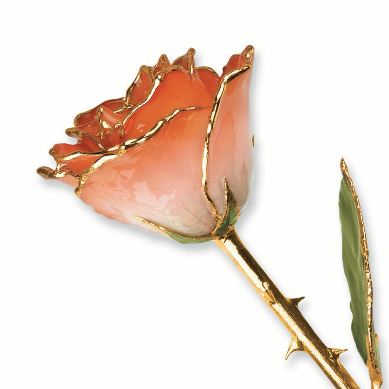 Lacquer Dipped Gold Trim White Orange Rose Figurine Orchid Leaf K Trimmed Keepsake Floral Home Decor Flower For Women