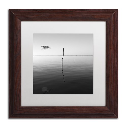 "Trademark Fine Art ""Fly"" Canvas Art by Moises Levy White Matte, Wood Frame"