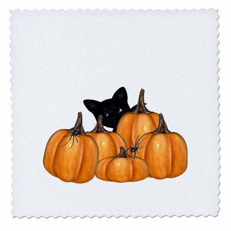 Halloween Quilt Kits (3dRose Kitty With Pumpkins And Creepy Spiders On Halloween - Quilt Square, 6 by)