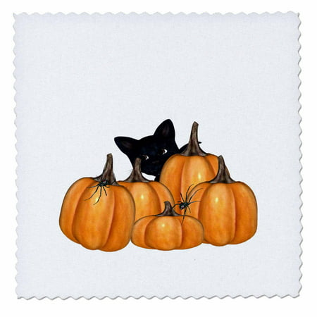 3dRose Kitty With Pumpkins And Creepy Spiders On Halloween - Quilt Square, 6 by 6-inch - Halloween Quilt