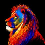 Selections by Chaumont ''Majestic Lion'' Painting Print