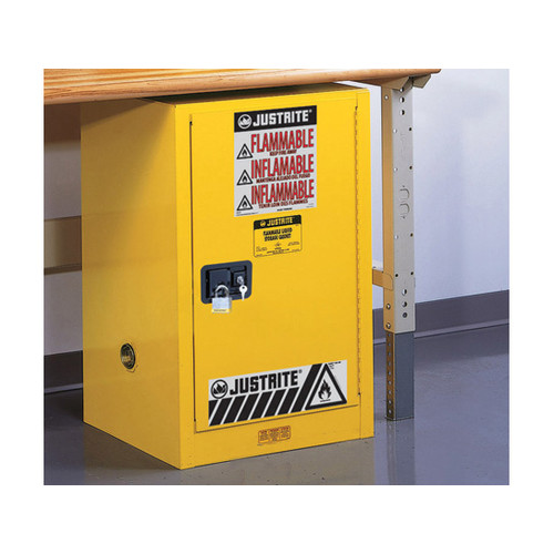 WFX Utility 35''H x 23.25''W x 23.25''D EX Compac Safety Cabinet