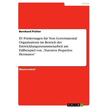 EU-Förderungen für Non Governmental Organizations im Bereich der Entwicklungszusammenarbeit am Fallbeispiel von 'Nuestros Pequeños Hermanos' -