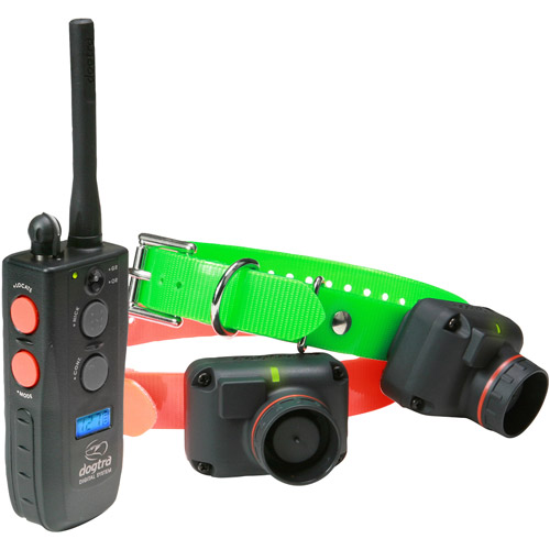 Dogtra Train and Beep 2 Dog System