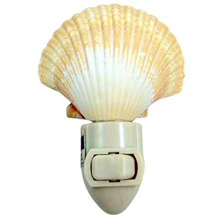 Seashell Four Light - Real Seashell Nightlight Mexican Deep Scallop Shell Light 4 Inch Tall Home Nautical Beach Decoration Gift, Real, natural shell lamp makes a perfect home.., By Westin Works Gifts