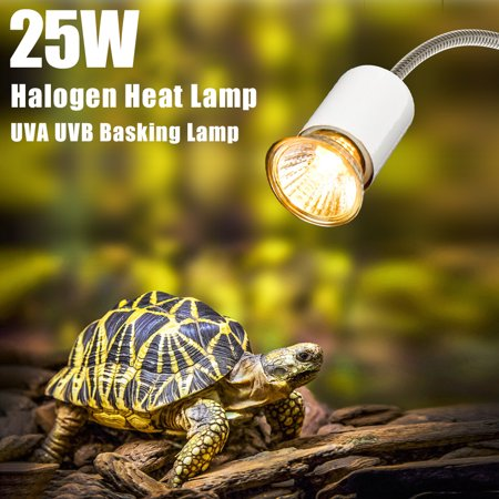 - Halogen Heat Lamp UVA UVB Basking Lamp Heater Light Bulb for Reptiles Lizard Turtle Aquarium 25W