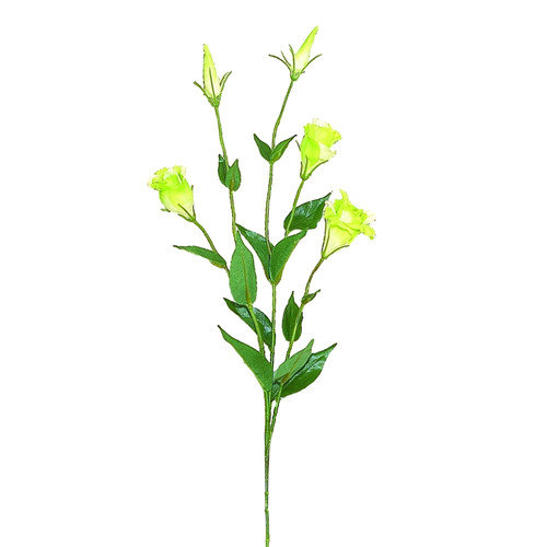 Teters Floral Green Silk Lisianthus