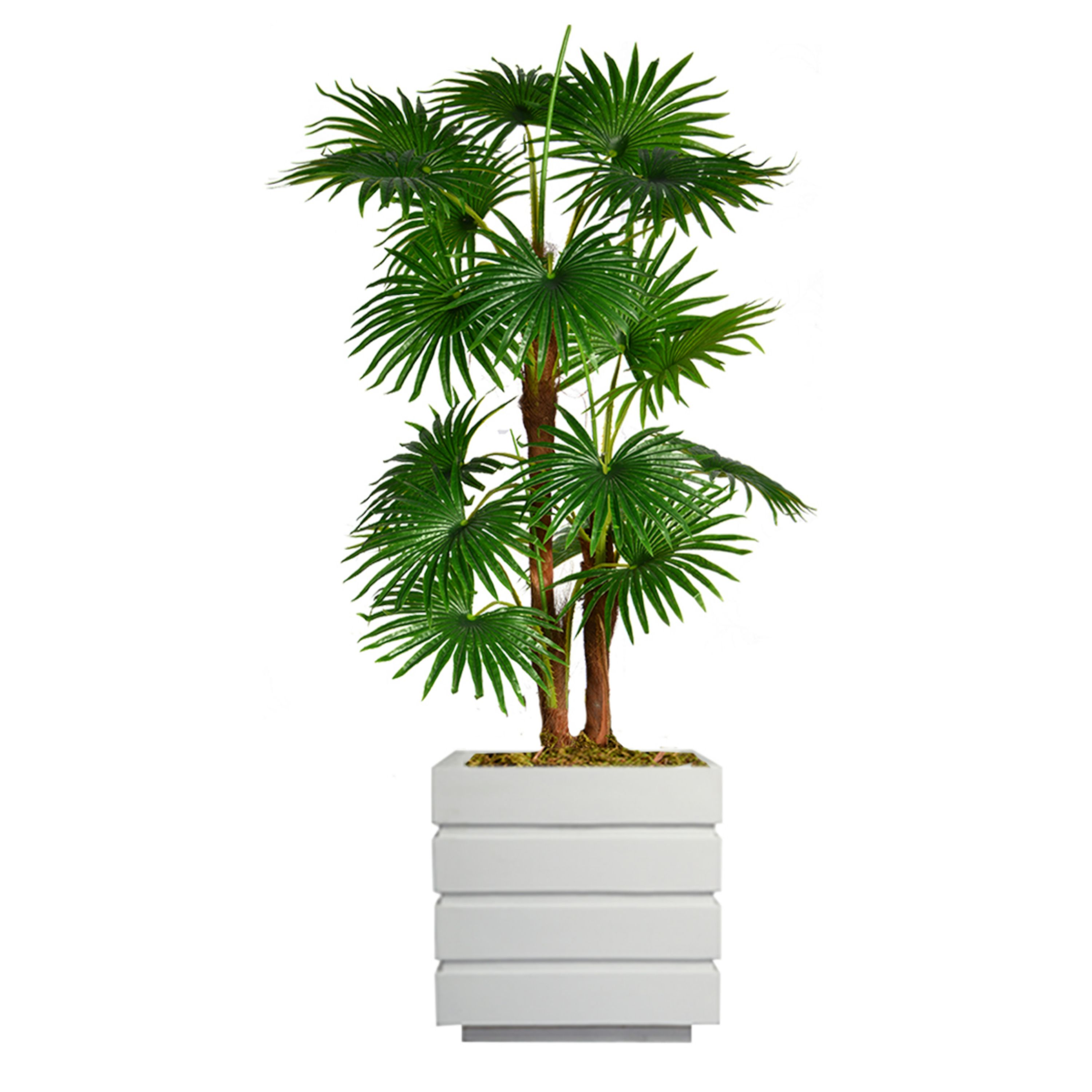 """54"""" Tall Fan Palm Tree Artificial Indoor/ Outdoor Décor Faux Burlap Kit and Fiberstone Planter By Minx NY"""