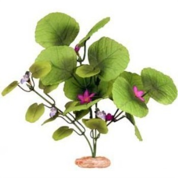 Blue Ribbon Pet Products Plant - Broad Lily Leaf With Buds Small Green
