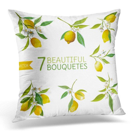 BSDHOME Blossom Vintage Fruits Flowers and Leaves Watercolor Style Lemons Branch Throw Pillow Case Pillow Cover Sofa Home Decor 16x16 Inches - image 1 of 1