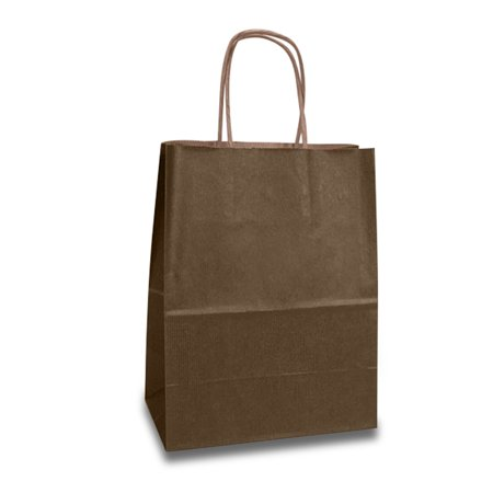 Brown Handle Gift Bags 16