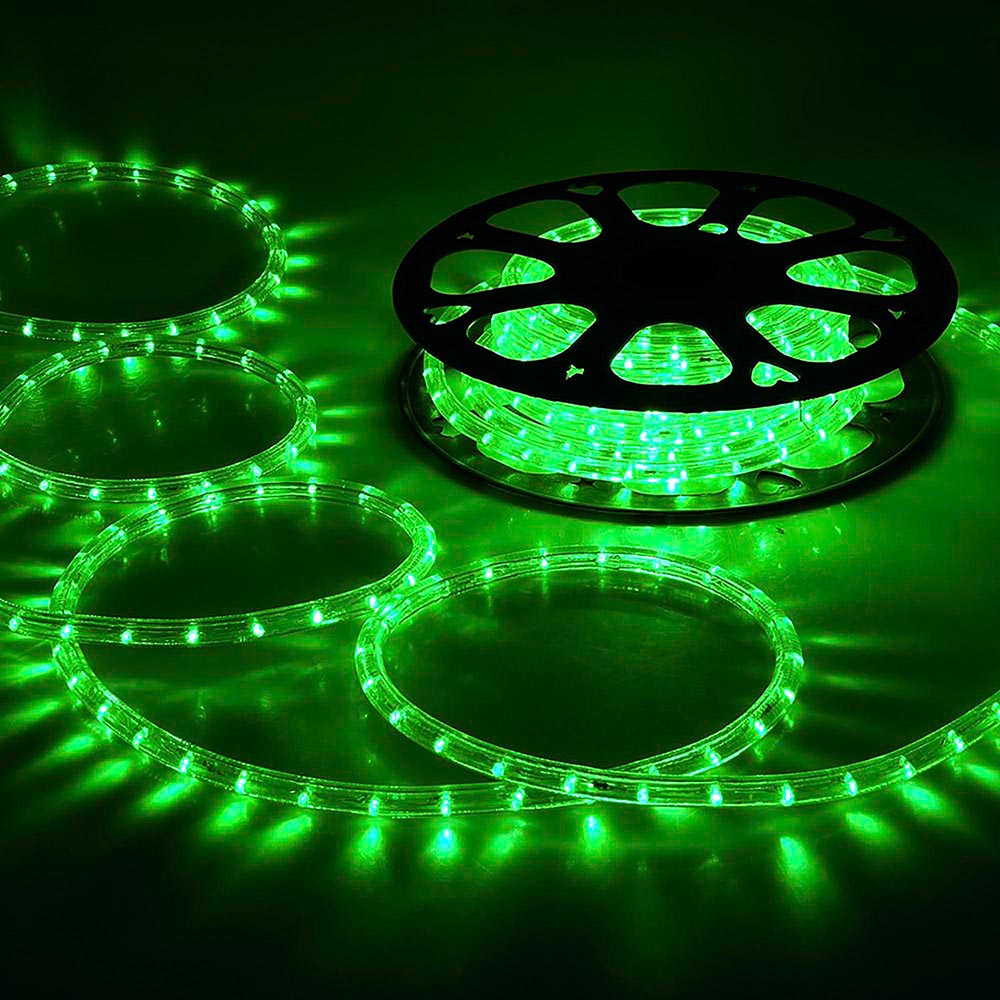 DELight 50ft Green 2 Wire LED Rope Light Indoor Outdoor Home Holiday Valentines Party Restaurant Cafe Decor by Yescom