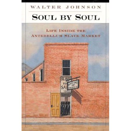 Soul by Soul : Life Inside the Antebellum Slave (Slave Market With Disappearing Bust Of Voltaire)