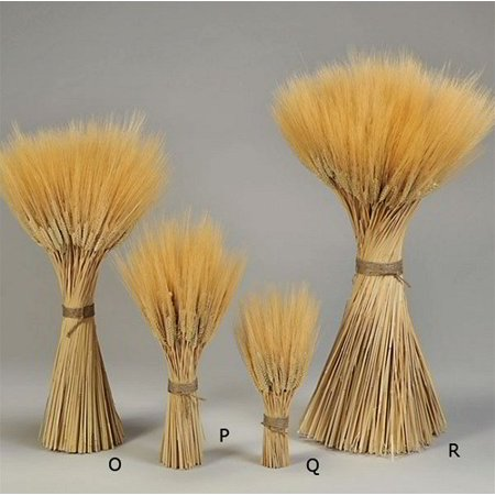 Triticum wheat stacks Small - Grande Size stack Professionally tied with jute twine Decorative Wheat Bundles -- Case of 6 Small Wheat Stacks