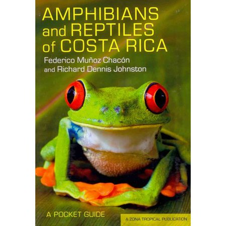 a comprehensive guide to the history of costa rica