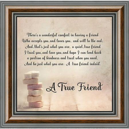 True Color Photo (A True Friend, Poem About Friendship, Picture Frame 10x10 8607 )