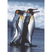 Penguin Waddle Blank Book Lined Journal (5x7)