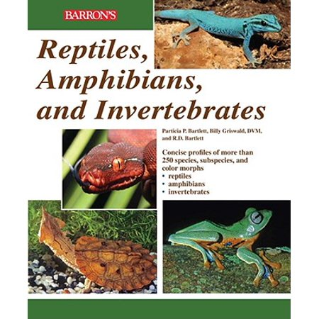 Reptiles, Amphibians, and Invertebrates : An ...