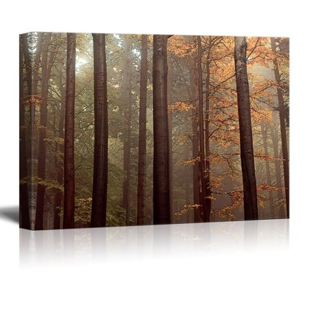 wall26 Canvas Wall Art - Red Pine Tree Forest in Autumn - Giclee Print Gallery Wrap Modern Home Decor Ready to Hang - 12
