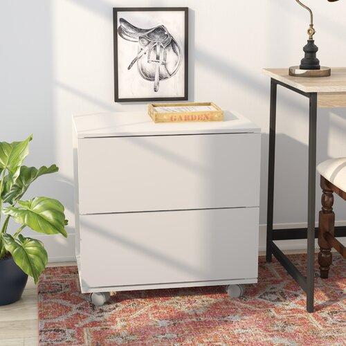 Winston Porter Duave 2 Drawer Lateral Filing Cabinet