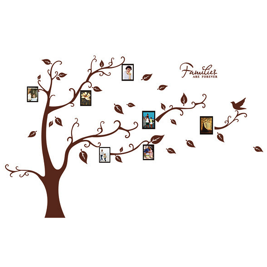 Photo Tree  Self-adhesive Removable Wall Sticker Decal Wallpaper 90x60cm