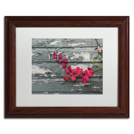 Trademark Fine Art 'Red Leaves on a Weathered Wall' Matted Framed Art by Kurt Shaffer Weathered Frame Art