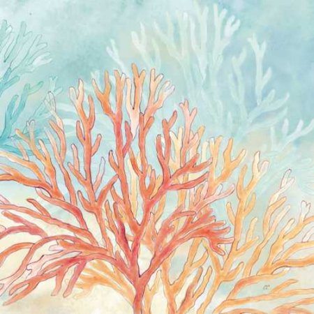 Coral Reef III Canvas Art - Cynthia Coulter (24 x