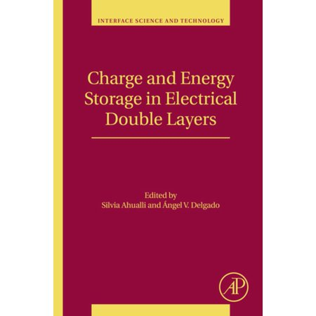 Charge and Energy Storage in Electrical Double Layers - eBook