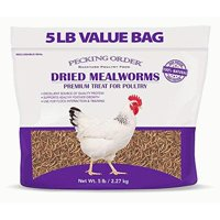 MEALWORMS DRIED 5LB