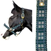 Intrepid International 128000HT Plaid Nylon Padded Halter with Solid Brass Hardware for Large Horse, Hunter Green & Tan