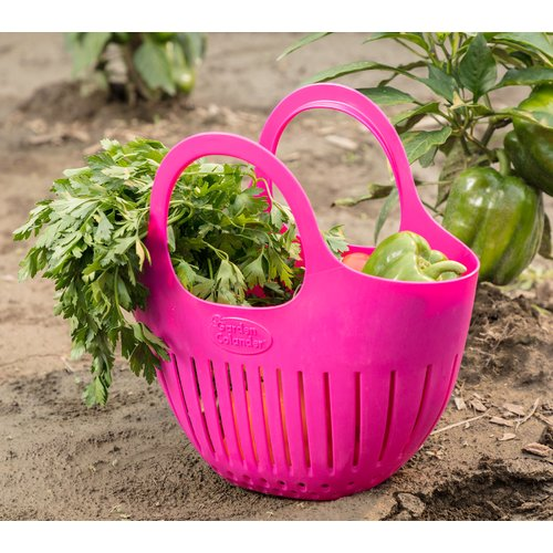 Hutzler Plastic Mini Harvest Garden Colander (Set of 2)