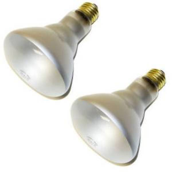 Satco 03417 65BR30 FL 2PK S3417 Reflector Flood Light Bulb by Satco