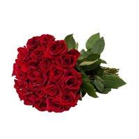Red Roses Gift 40 cm - Fresh Cut - 24 Stems