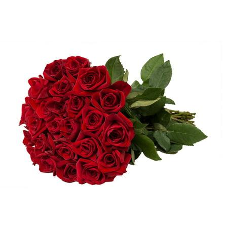 Bloomingmore Flowers, 24 Farm Fresh Red Roses (Love Fresh Flowers)
