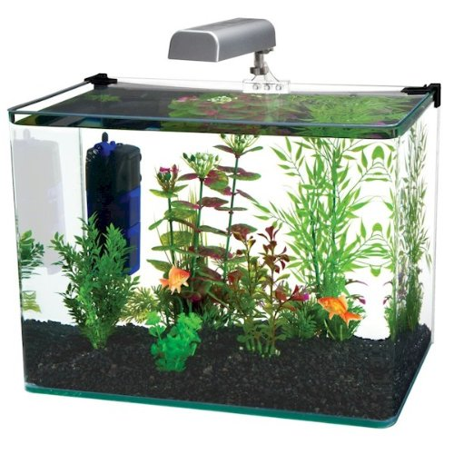Curved Corner Glass Aquarium Kit, This aquarium has a unique bent glass design that is frameless and seamless in front for unobstructed.., By Penn Plax