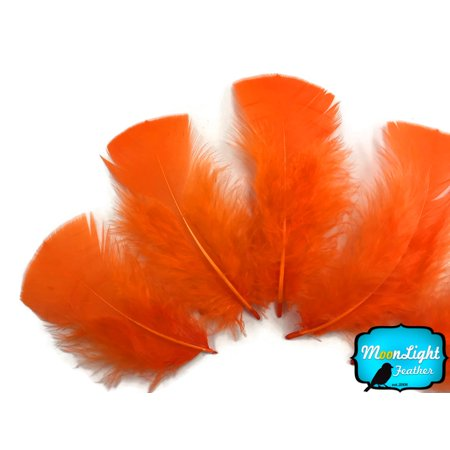 1/4 Lb - Orange Turkey T-Base Plumage Wholesale Feathers - Bulk Feathers