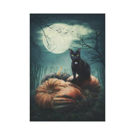 MYPOP Halloween Black Cat on a Pumpkin Garden Flag Outdoor Banner 28 x 40 inch - Halloween Cat Flags