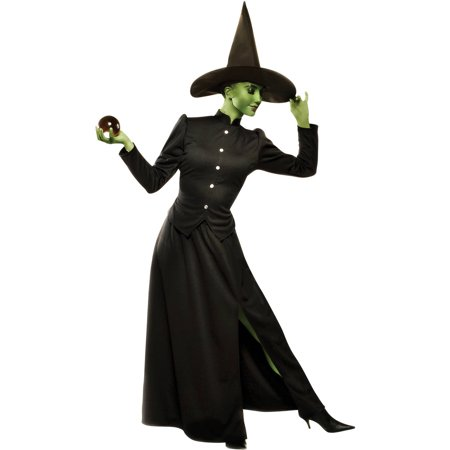 Classic Witch Women's Adult Halloween Costume - Black Cat Witch Halloween Costume