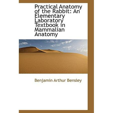 Practical Anatomy of the Rabbit : An Elementary Laboratory Textbook in Mammalian Anatomy