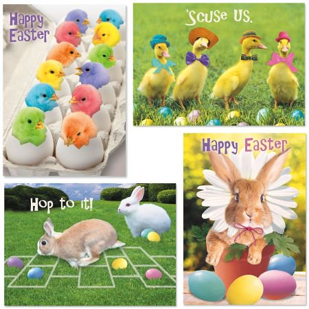 Easter Verses For Cards (Picture This Easter Greeting Cards - Set of 8, Yellow Envelope Included, Sentiment,)