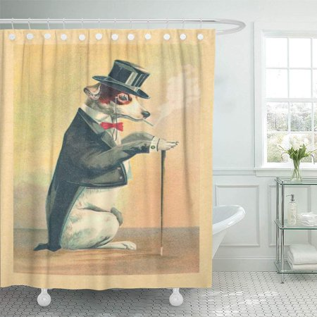 YUSDECOR Old Cute Vintage Top Hat Victorian Pets Funny Bathroom Decor Bath Shower Curtain 66x72 inch - image 1 of 1