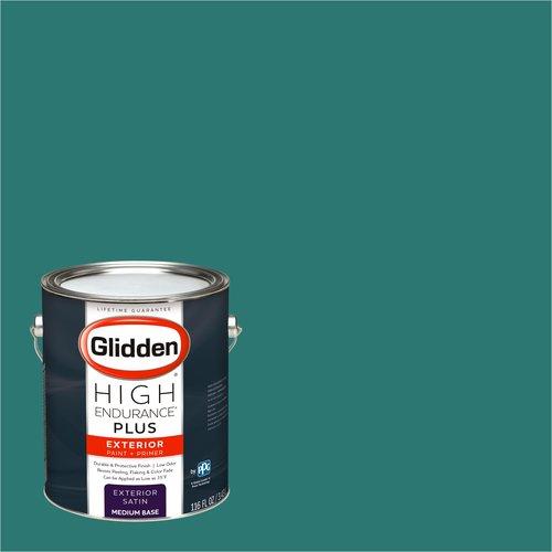 1 Gallon Paint Sprayer