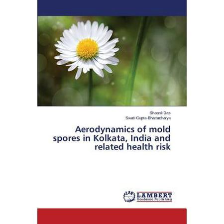 Aerodynamics of Mold Spores in Kolkata, India and Related Health Risk