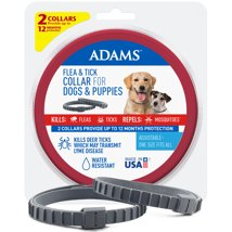 Dog Medication & Health Supplies: Adams
