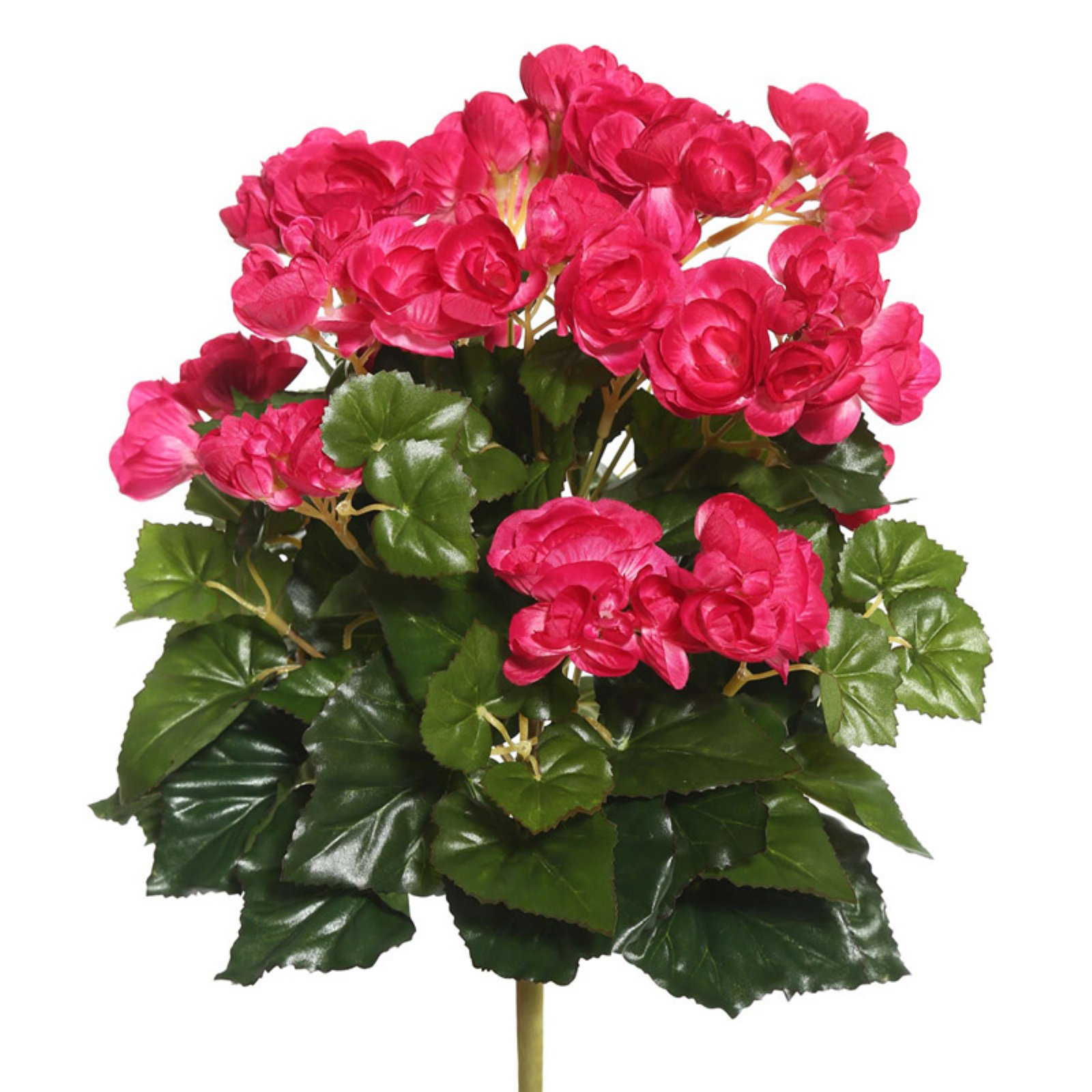 "Vickerman 15.25"" Hot Pink Polyester Begonia Bush with 90 Leaves and 102 Flowers"